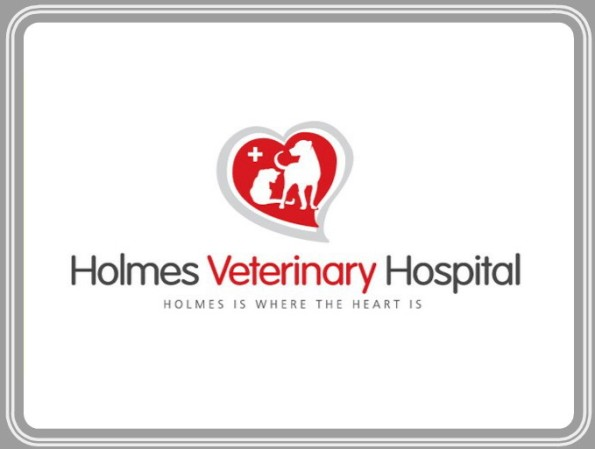 Holmes Veterinary Hospital in Laurens, SC